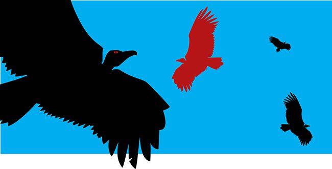 143 Fundos abutres_RV1-1