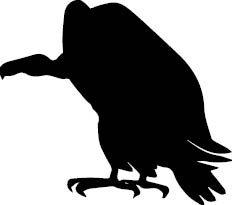 143 Fundos abutres_RV1-2