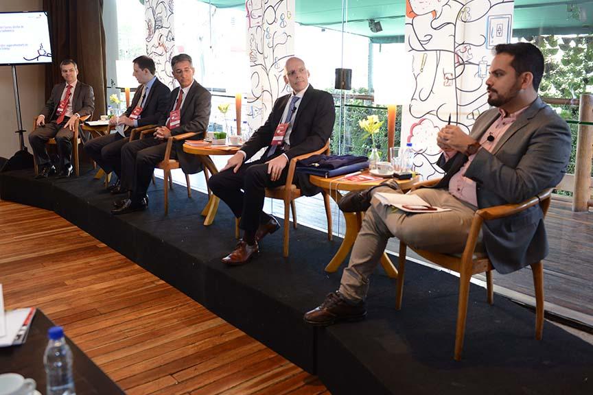 Grupo de Discussão Governança em cias abertas - Novo parecer