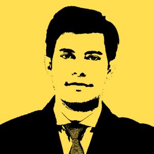 José Alves Ribeiro Jr. *