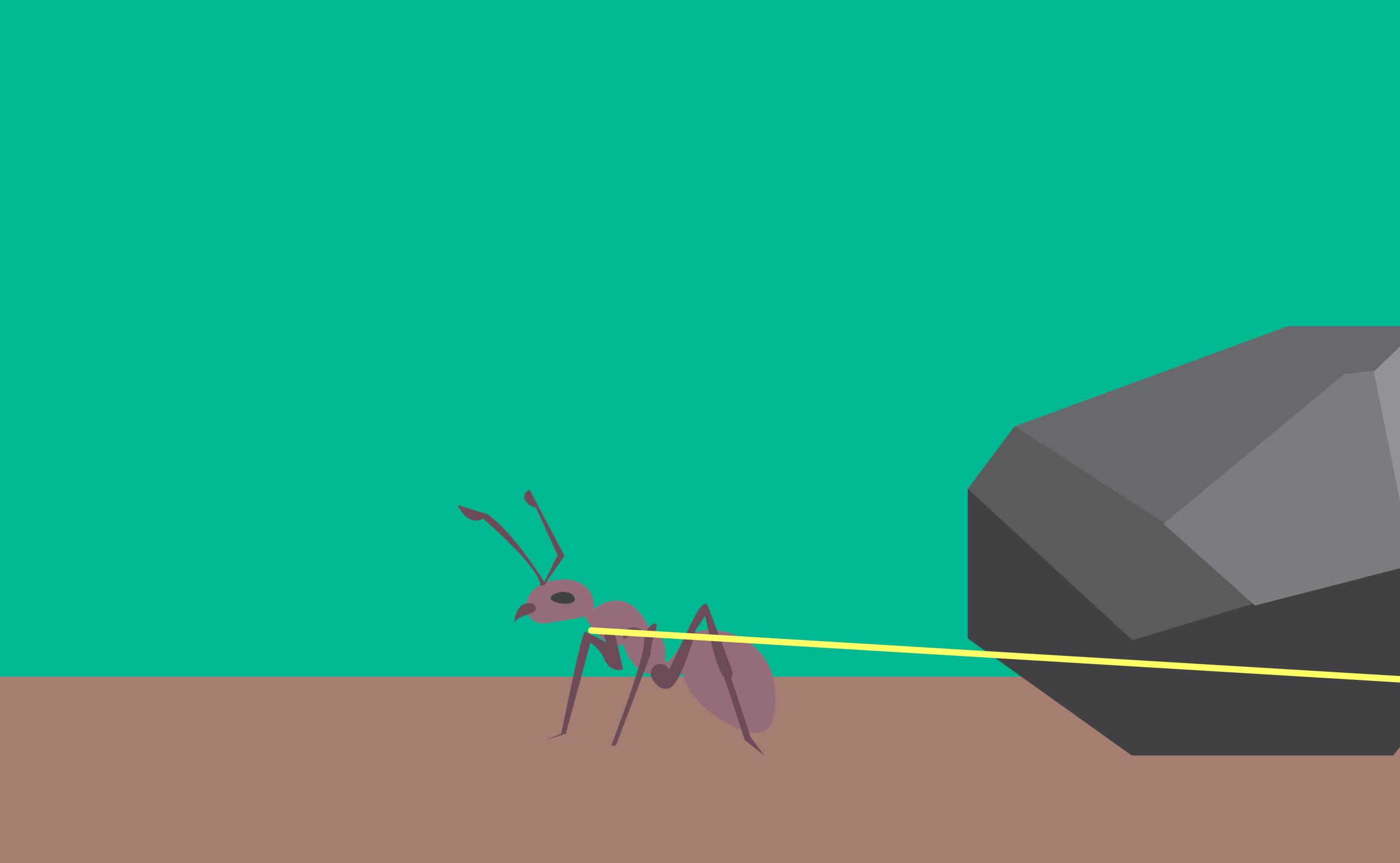 Formiga se esforça para carregar sozinha uma pedra