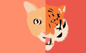 Ilustração de um rosto metade tigre e metade gato