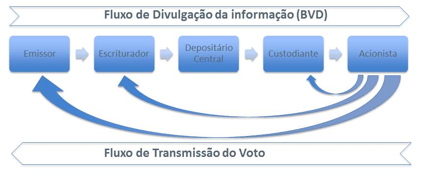 Fluxo de Divulgação da informação (BDV)