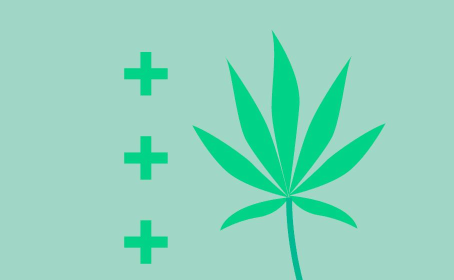 Investidores cobram retorno da indústria de Cannabis