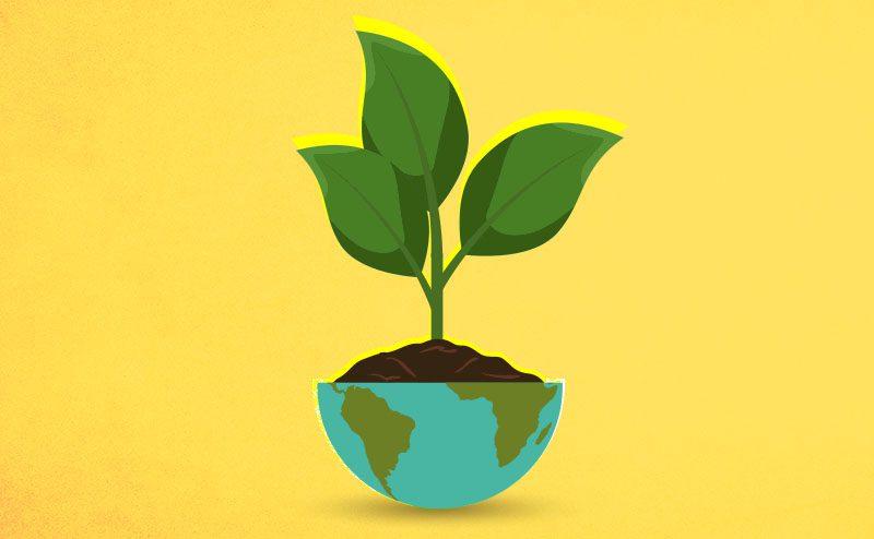 As lições do Greenpeace para o investimento ESG